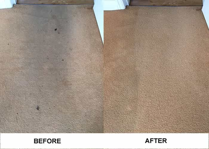 Cleaned Carpets